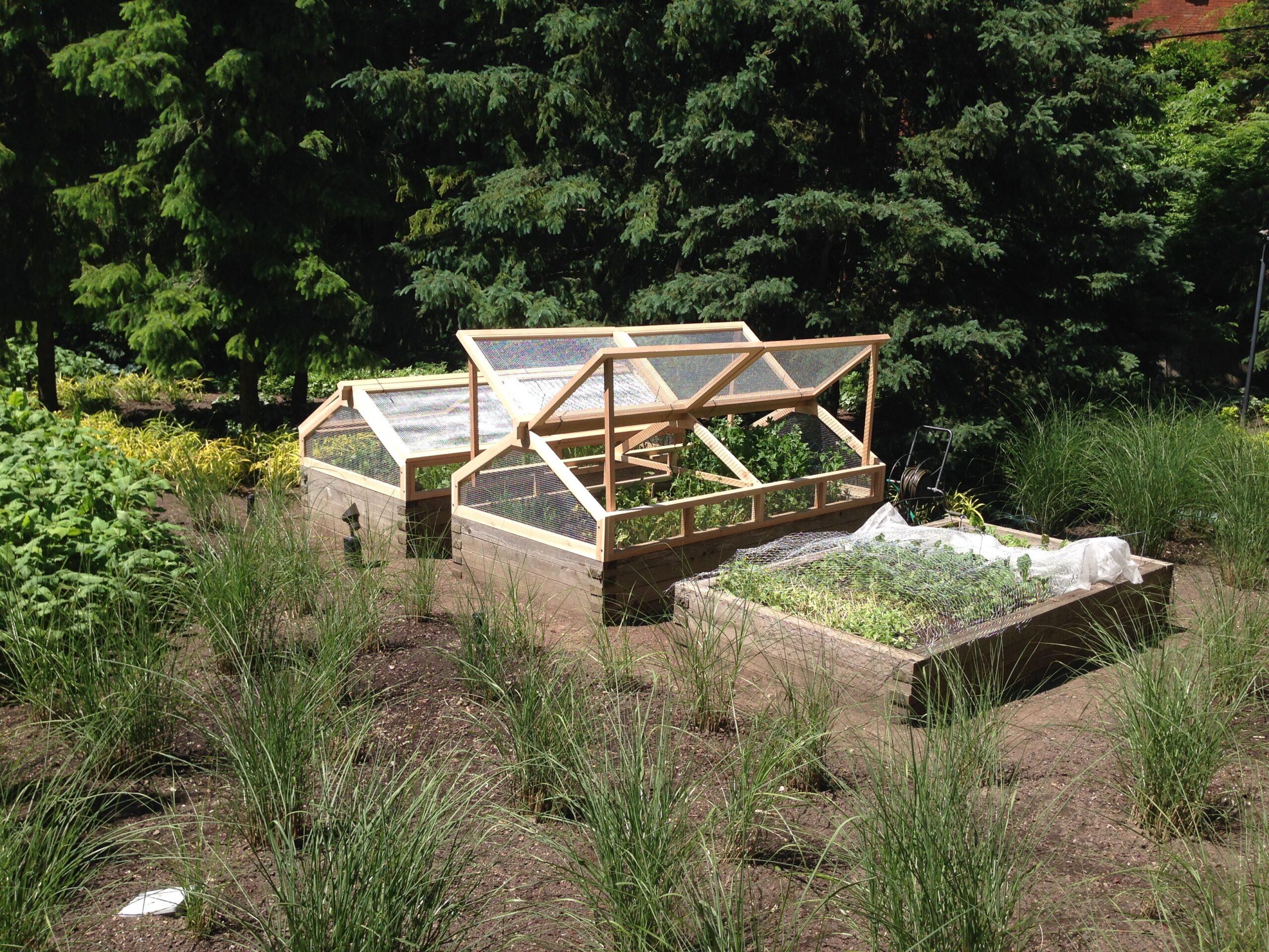 Organic rabbit guard by Built Work Design